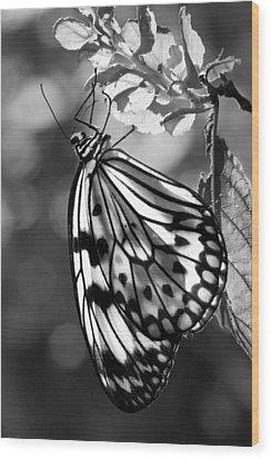 Lavalier Wood Print by Nikolyn McDonald