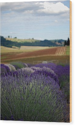Lavendar Fields Forever Wood Print by Mamie Gunning
