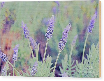 Lavender Wood Print by Cassandra Buckley