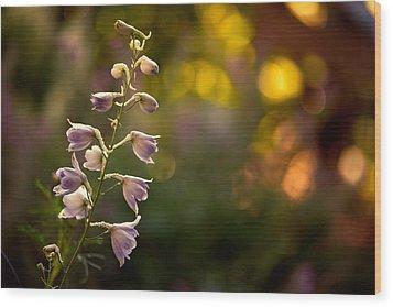 Lavender Delphinium Wood Print by Bonnie Bruno