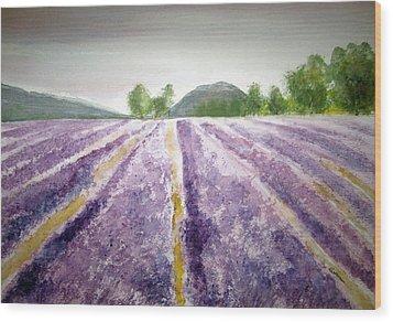 Lavender Fields Tasmania Wood Print by Elvira Ingram