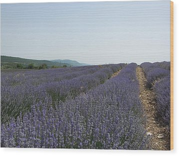 Wood Print featuring the photograph Lavender Sky by Pema Hou