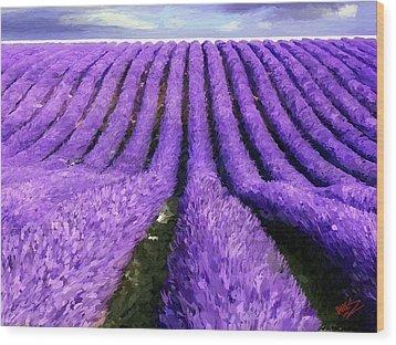 Lavender Straight Wood Print by James Shepherd