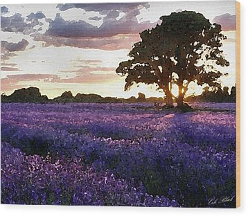Lavender Sunset Wood Print by Cole Black