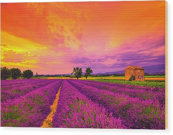 Lavender Sunset Wood Print