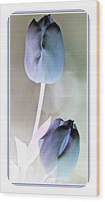 Lavender Tulips Wood Print by Danielle  Parent