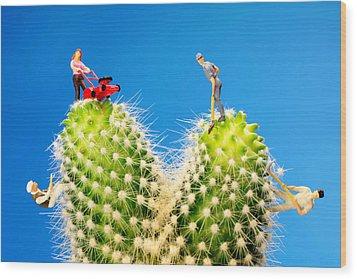 Lawn Mowing On Cactus II Wood Print by Paul Ge