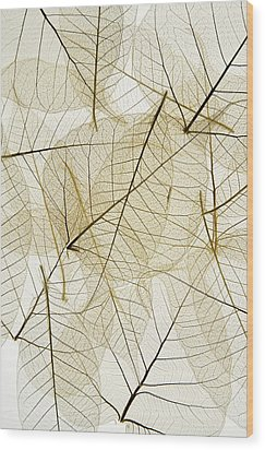 Layered Leaves Wood Print by Kelly Redinger