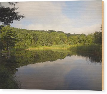 Wood Print featuring the photograph Lazy Afternoon by Michael Porchik