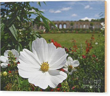 Wood Print featuring the photograph Le Fleur De Versailles by Suzanne Oesterling