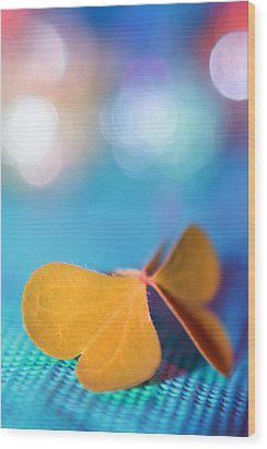 Le Papillon - The Butterfly - 21 Wood Print by Variance Collections