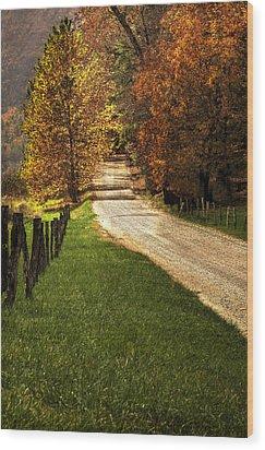 Lead Me Home Wood Print by Andrew Soundarajan