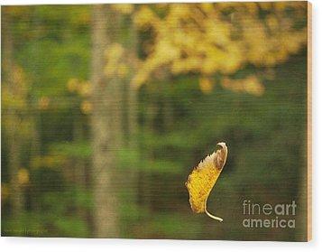 Leaf Aloft Wood Print