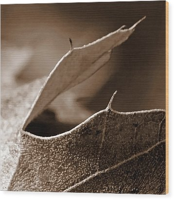 Wood Print featuring the photograph Leaf Collage 2 by Lauren Radke