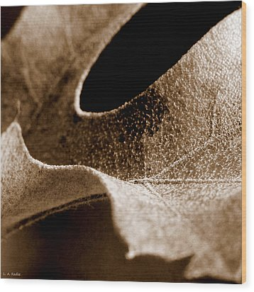 Wood Print featuring the photograph Leaf Collage 3 by Lauren Radke