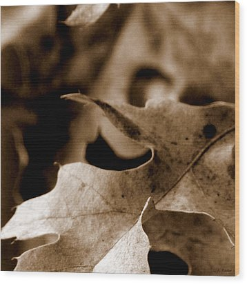 Wood Print featuring the photograph Leaf Collage 4 by Lauren Radke