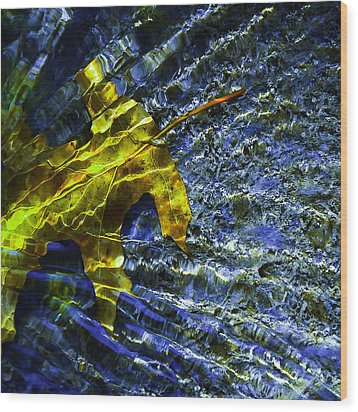 Wood Print featuring the photograph Leaf In Creek - Blue Abstract by Darryl Dalton