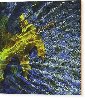 Leaf In Creek - Blue Abstract Wood Print by Darryl Dalton