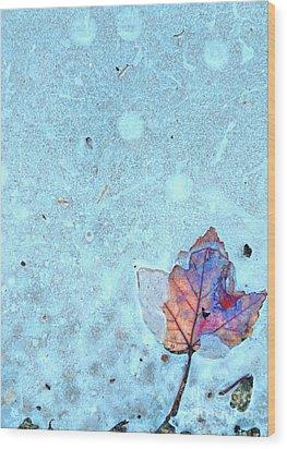 Leaf In Ice Wood Print