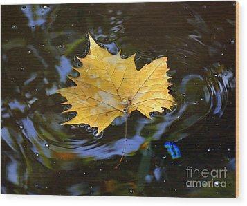 Leaf In Pond Wood Print