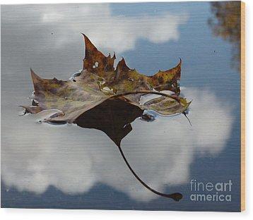 Leaf In Sky Wood Print by Jane Ford