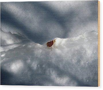 Leaf In Winter Landscape Wood Print by Carolyn Reinhart