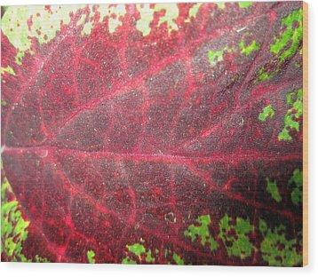 Leaf Me Be Wood Print by Mike Podhorzer
