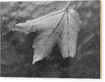 Leaf On Glass Wood Print