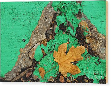 Leaf On Green Cement Wood Print by Amy Cicconi
