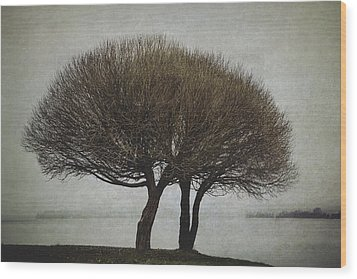 Wood Print featuring the photograph Leafless Couple by Ari Salmela