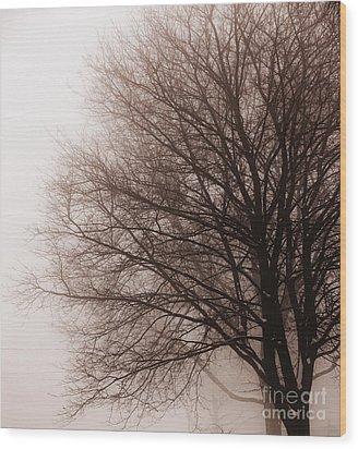 Leafless Tree In Fog Wood Print by Elena Elisseeva