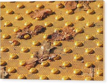 Leafs On A Grid Wood Print by Sylvia Blaauw