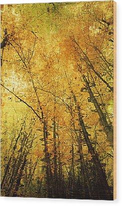 Leafy Canopy Iv Wood Print by Natalie Kinnear