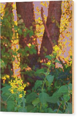 Wood Print featuring the photograph Leafy IIi by Shirley Moravec