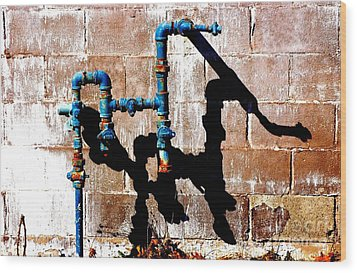 Wood Print featuring the photograph Leaky Faucet II by Christiane Hellner-OBrien