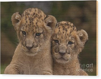 Lean On Me Wood Print by Ashley Vincent
