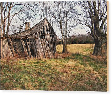 Lean To Wood Print by Marty Koch