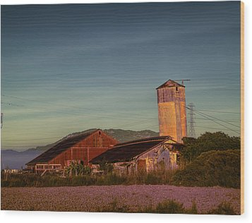 Leaning Silo  Wood Print by Bill Gallagher