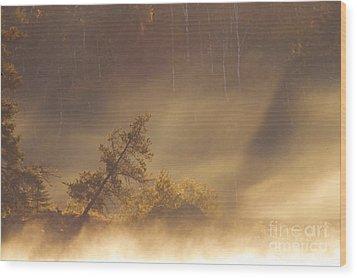 Leaning Tree In Swirling Fog Wood Print by Larry Ricker