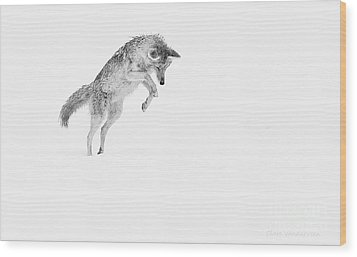 Leap Wood Print by Clare VanderVeen