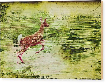 Leap Into Spring Wood Print by Jon Van Gilder
