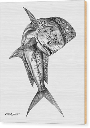 Leaping Dolphin  Wood Print