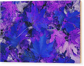 Wood Print featuring the photograph Leaves by Aimee L Maher Photography and Art Visit ALMGallerydotcom