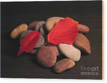 Leaves And Stones Wood Print by Art Photography