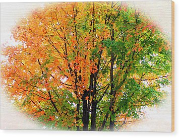 Leaves Changing Colors Wood Print by Cynthia Guinn