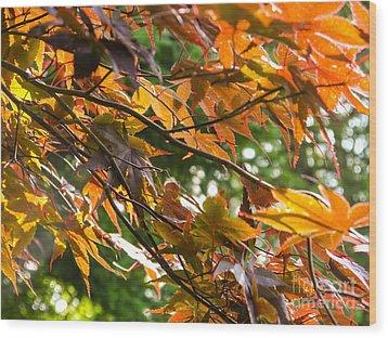 Leaves Wood Print by Ernest Puglisi