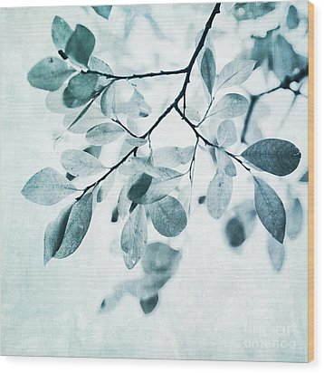 Leaves In Dusty Blue Wood Print by Priska Wettstein