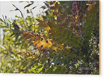 Leaves Wood Print by Kate Brown