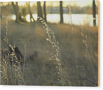 Leaves Of Grass Wood Print