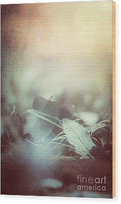 Leaves Of Time  Wood Print